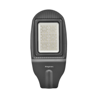 Braytron ulicna svetiljka 100W 6500K IP65